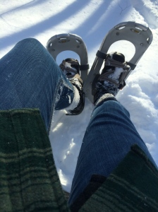7.snowshoe.2