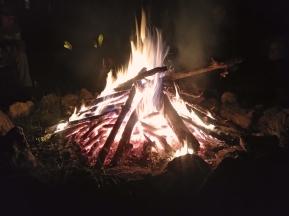 Bonfire_4286
